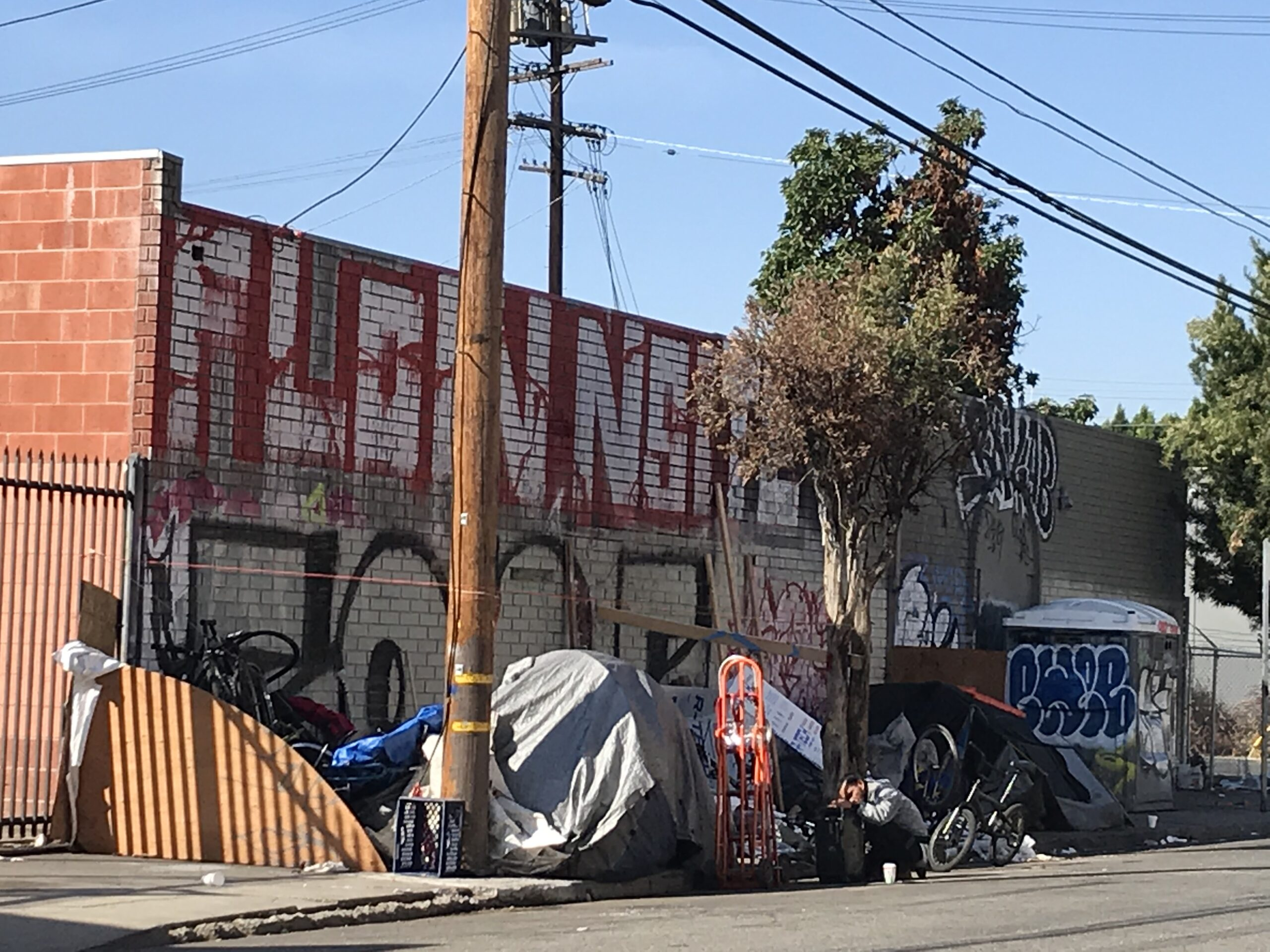 Protest Vote for Trump | LA Pays, Homeless Die | De Leon Clams Up | Calling Kim for Hope of City | Zocalo's Mission Identical | Miss on Pac Life | Pimco's Point