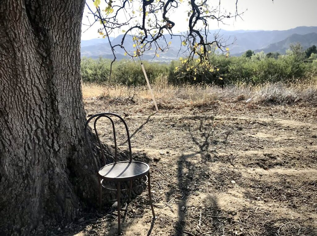 A photo of a lone chair by a tree on a trail in SCV